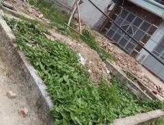 Bán đất nông nghiệp ở ngõ 207 bùi xương trạch giá 420 triệu