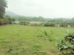 Bán 4000m2 đất thổ cư trang trại nhà vườn rẻ đẹp tại yên bài