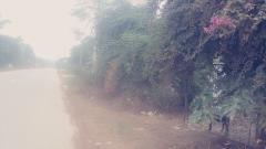 Cần bán lô đất 700m2 mặt đường tỉnh lô 87a xã yên bài