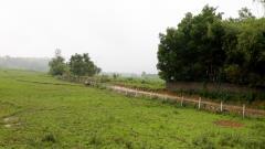 Cần bán 3600m đất thổ cư xã phú mãm vị trí đẹp giá rẻ