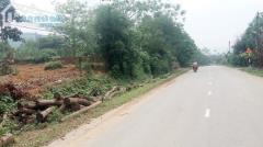 Bán 600m đất mặt đường tỉnh lộ 87 thuộc thôn muỗi xã yên bài