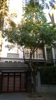 Cho thuê biệt thự bt1 mỹ đình 1, diện tích 200 m2