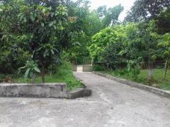 Bán đất thôn đồng vỡ xã phú mãn huyện quốc oai hà nội