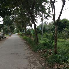 Bán đất mat tiền đường phú hoà tp tra vinh
