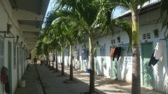 Bđs gồm 48 phòng trọ tại xã long đức - tptv