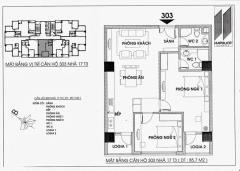 Chính chủ cần bán căn 04 chung cư hapulico 17t3 98 m2