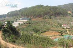 Cần bán gấp một mảnh vườn 2.700 mét giá rẻ