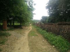 Cần bán 5670m đất thổ cư trang trại nhà vườn tại yên bài