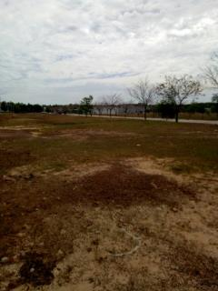 Có 800m2 đất gần trường đại học việt-đức cần bán gấp. 220tr
