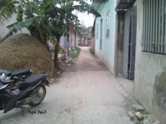 Bán đất thổ cư tại thôn bối khê xã tam hưng huyện thanh oai