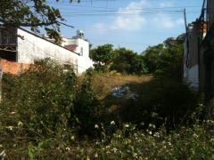 Bán đất nông nghiệp, wl1, p5, tx cai lậy, tiền giang