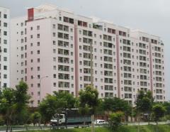 Sở hữu căn hộ nam cường tố hữu cao cấp chỉ từ 21tr/m2