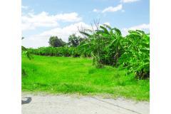 Cơ hội sở hữu nền đất 3000m2 tại xã hưng long bình chánh