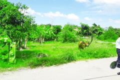 Bán 1900m2 đất thổ vườn xã đa phước bình chánh