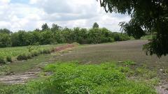 Bán 2200m2 đất vườn, xã đa phước  , bình chánh chỉ  21  tỷ