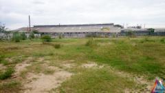 Sang nhượng đất xưởng giá rẻ, mt đường 20m, shr, đất cao ráo