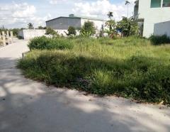 Bán đất mặt tiền tx43, q12, diện tích 5 x 18 đường bê tông
