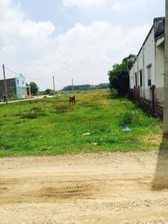 2 mảnh đất sổ hồng, có thổ cư, hướng tây tại phường long tâm