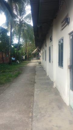Xã tam phước: cho thuê khu đất 11m*150m (mặt tiền đường)