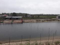 Cần bán đất trang trại 7ha và đất trồng rừng 17ha