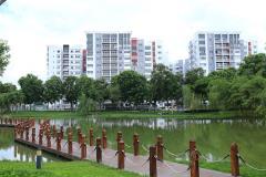 Cho thuê căn hộ celadon city ( 3 phòng ngủ , view đẹp )