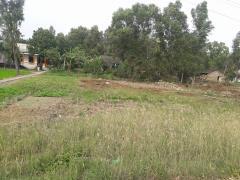 Bán đất nền thổ cư tại xã bình đông tx gò công