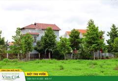 Mở bán phân khu biệt thự vườn xanh,dt: 200-400 m2