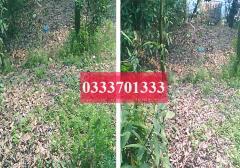 Cần bán ô đất s = 82.8m2 (4.1*20.2), hướng tb giá 400tr