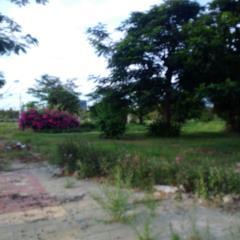 Bán nhanh lô đất trên đường trường sa nối dài, đ.23m(lề 5m )