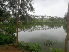 Bán 9000m2 đất mặt hồ vô cùng đẹp chỉ với hơn 1tr/1m2