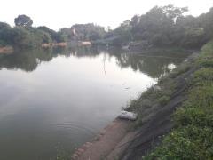 Chỉ với 900k/1m2 bạn có ngay lô đất mặt hồ đẹp tuyệt vời