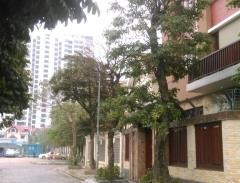 Bán biệt thự cao cấp đ5 vườn đào tây hồ hà nội 250m giá 45 t
