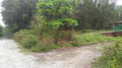 Bán đất nhơn trạch đồng nai giá rẻ 1500m2, đường lớn, giá
