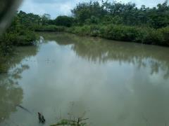 Bán 33.000m2 đất vườn giáp sông tại long thành đồng nai.