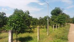 Bán 42.000m2 đất vườn 2 mặt tiền rất đẹp tại đồng nai