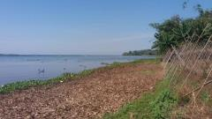Bán 20.000m2 đất vườn giáp hồ sinh thái tuyệt đẹp tại đồng n