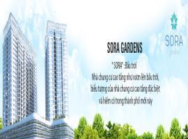 Tổng thể chung cư Sora gardens