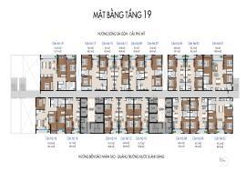Tang-19