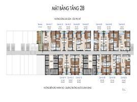 Tang-28