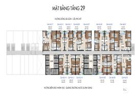 Tang-29