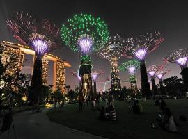 617988-singapore-garden-supertrees-lights
