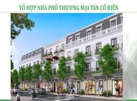 Tổ hợp nhà phố thương mại tân cổ điên tại dự án Vi