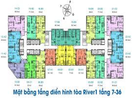 Mặt bằng tầng điển hình tòa River 1 dự án Eurowind