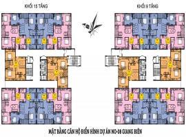 Mặt bằng tầng điển hình dự án NO8 Biên Giang