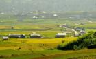 Từ 1/6 miễn, giảm tiền sử dụng đất cho các vùng khó khăn