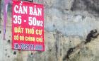 Hà Nội: Đất thổ cư âm thầm hút khách