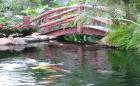 Sân vuờn duyên dáng với cầu nhỏ cong cong