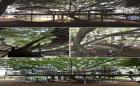 14 công trình đẹp nhất nhất đại diện cho kiến trúc Nhật Bản hiện đại