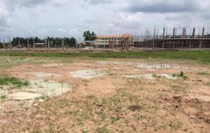 Nhà đầu tư găm đất nông nghiệp chờ tăng giá sau quyết định tách thửa